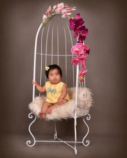 صندلی قفس کودک